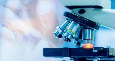 ¿Qué es un Microscopio Óptico?